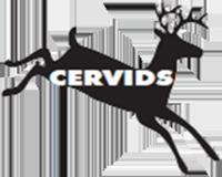 Cervids