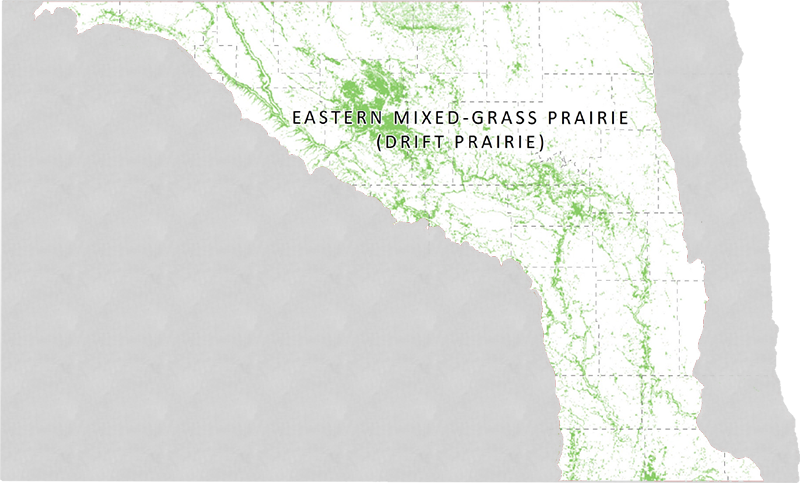 Icon for Eastern Mixed-grass Prairie