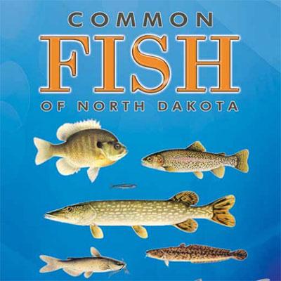 North dakota fish north dakota game and fish for North dakota fishing