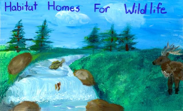 Keep north dakota clean poster contest north dakota game for Fishing license nd