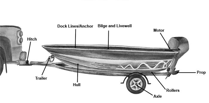 Boat with common ANS areas marked