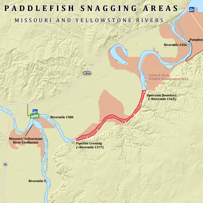 Paddlefish Snagging Season North Dakota Game And Fish
