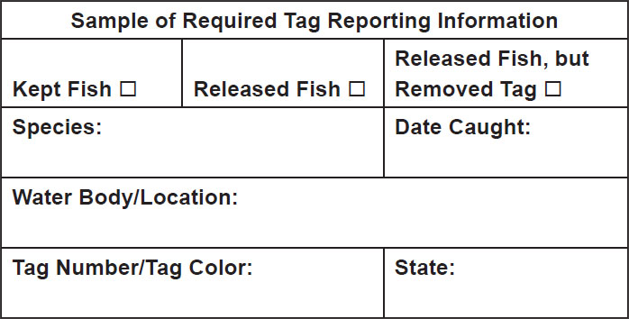 Tag Reporting Info