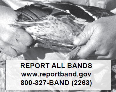 Report all bands - 800-327-2263