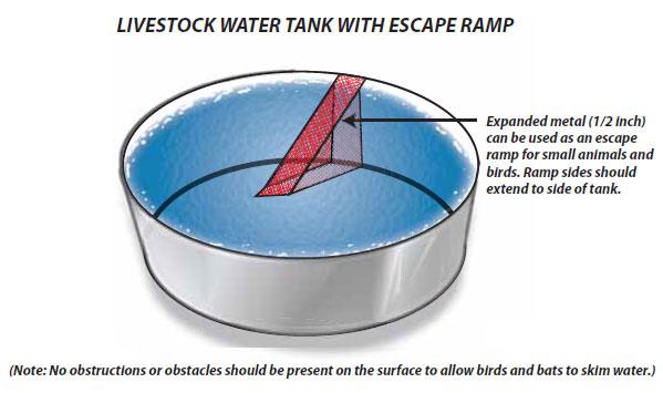 Stock Tank
