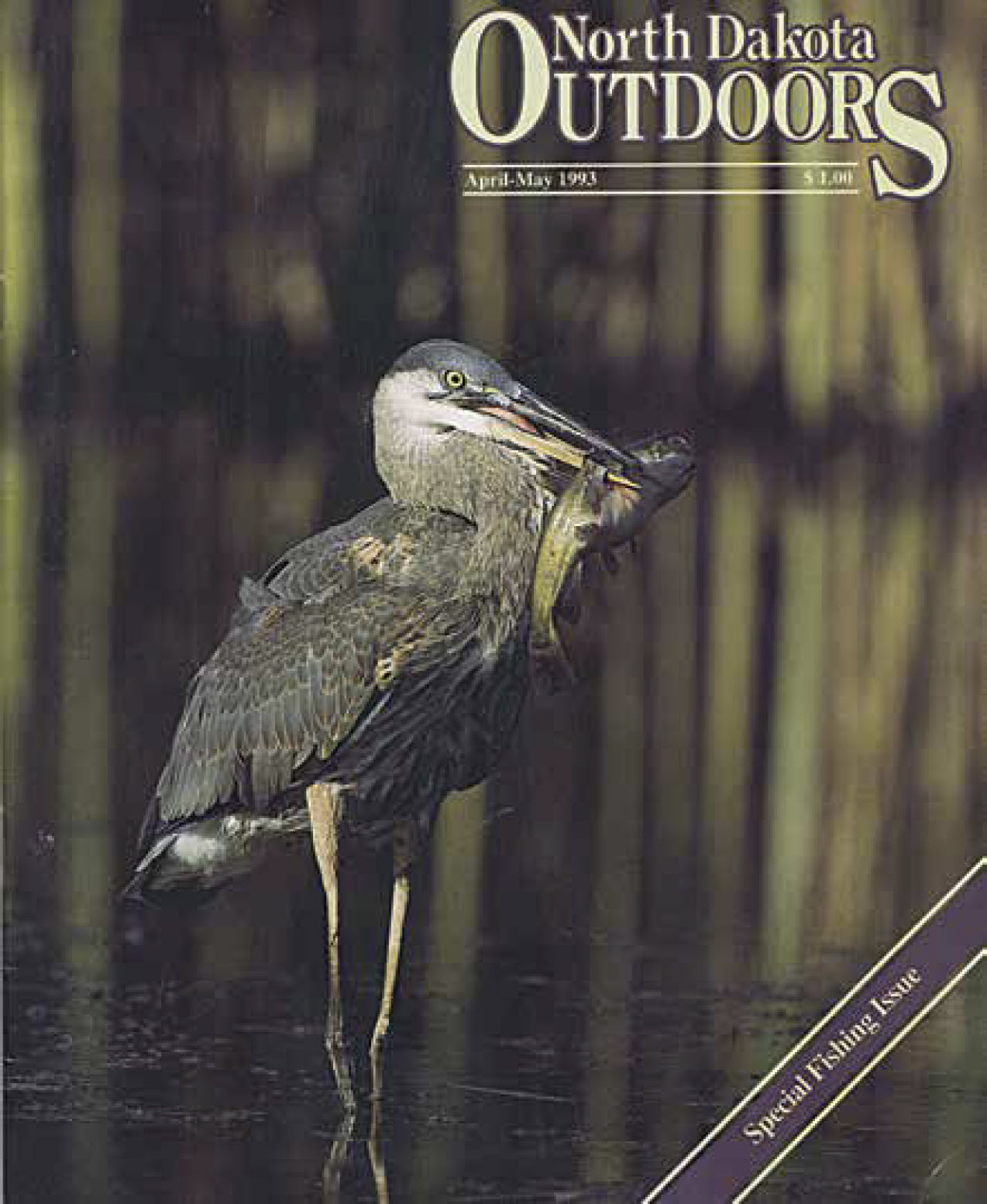 1993 Outdoors cover
