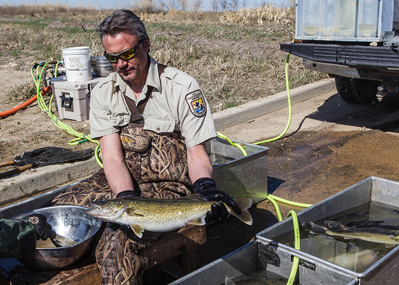 Fishing Report Card Revisited | North Dakota Game and Fish