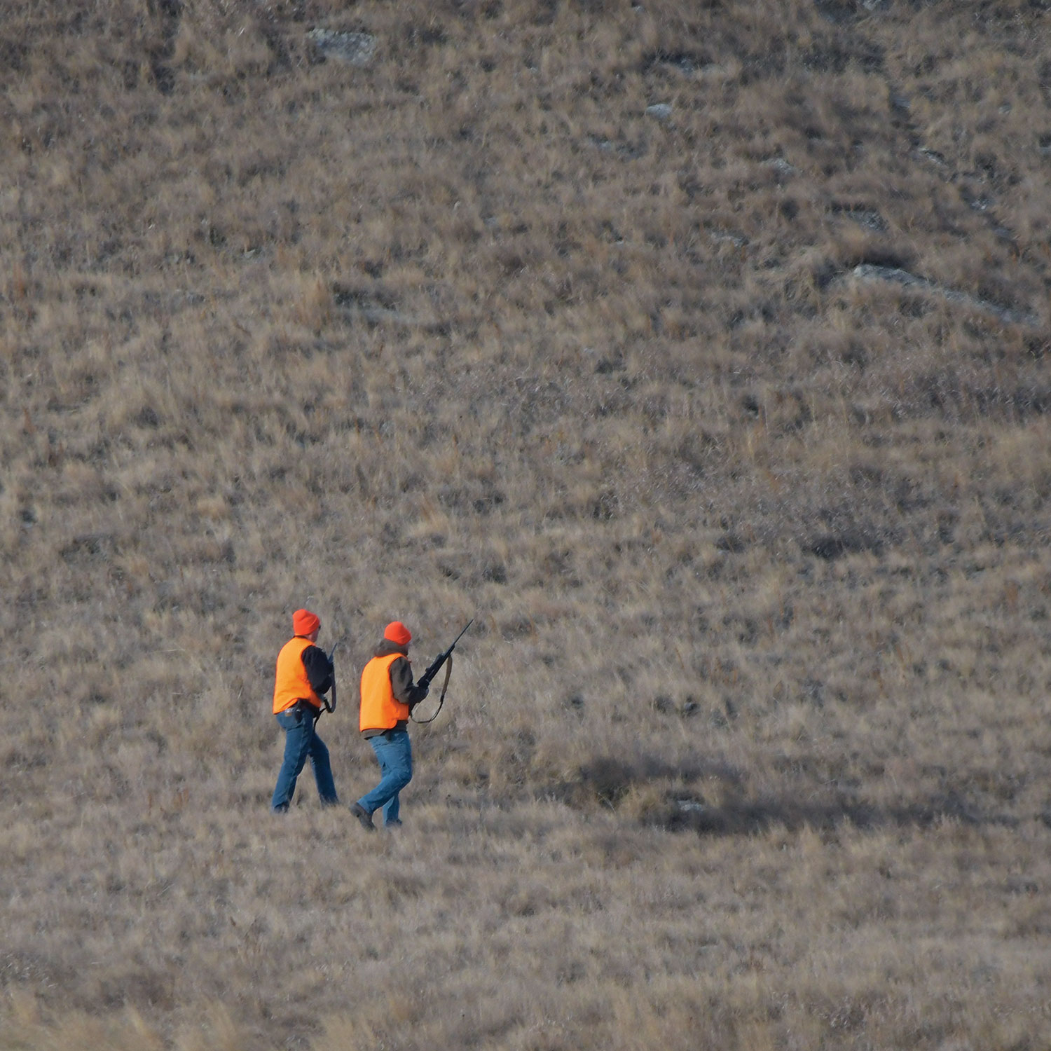 Two deer hunters walking on prairie