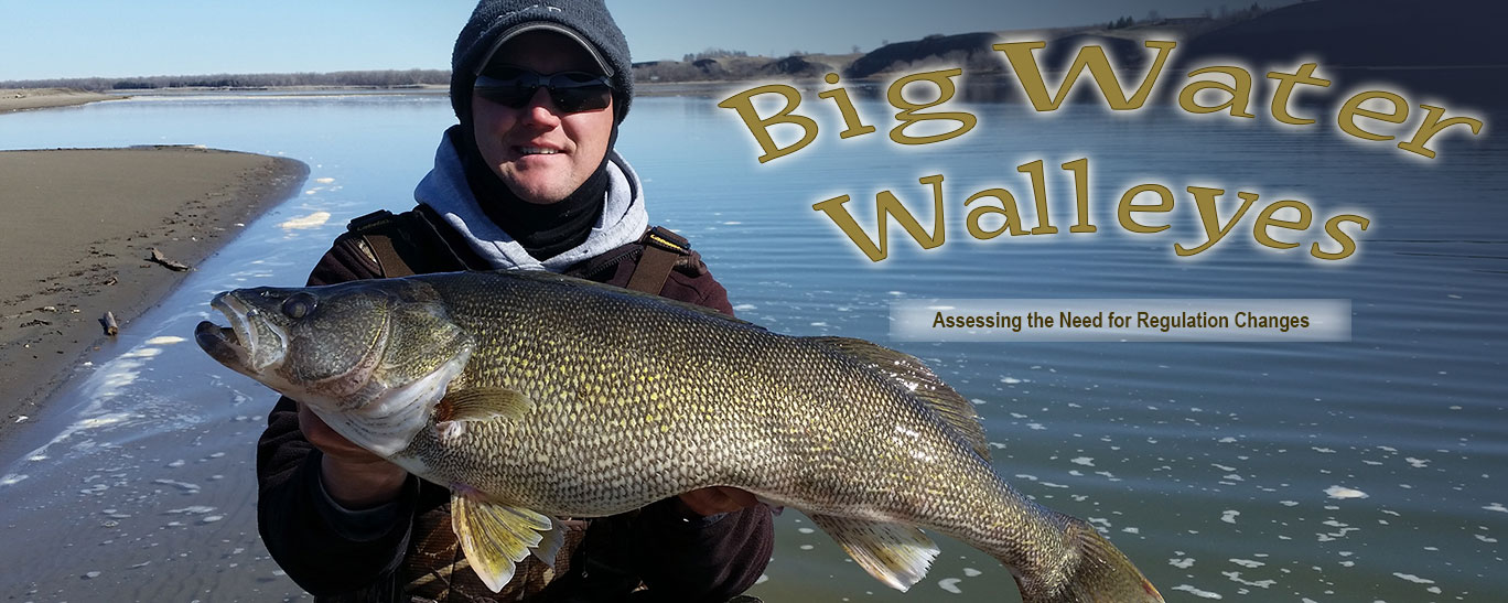 Big water walleyes north dakota game and fish for Missouri fishing regulations 2017