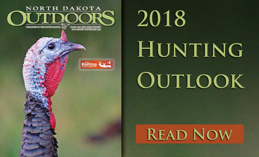 Hunting outlook graphic