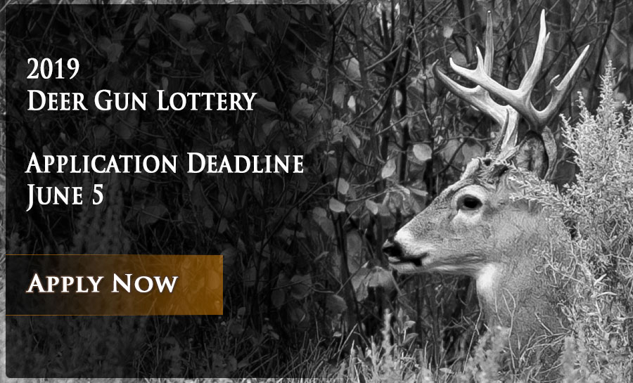 Deer lottery graphic