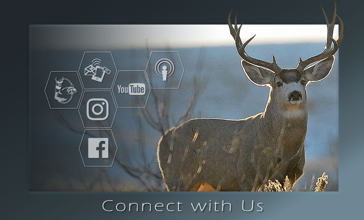 Mule deer connect graphic