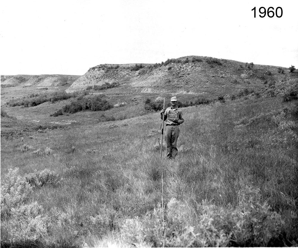 Transect in 1960