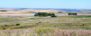 Eastern mixed-grass Prairie
