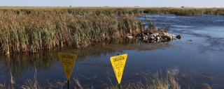 PLOTS sign in wetland