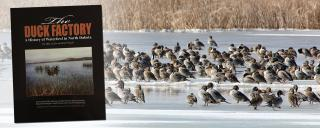 Group of ducks on ice with book cover overlay