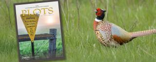 Cover of PLOTS guide superimposed over pheasant rooster photo