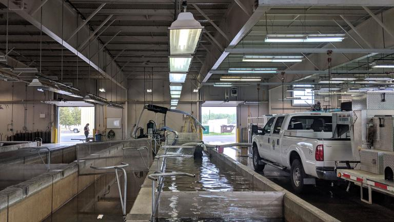 Inside Garrison Fish Hatchery