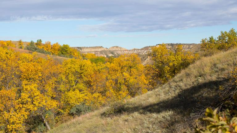Badlands in the fall