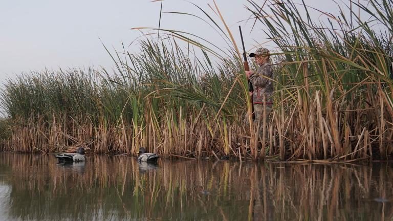 Young hunter in marsh