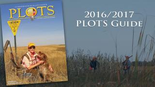 Plots Guide Cover